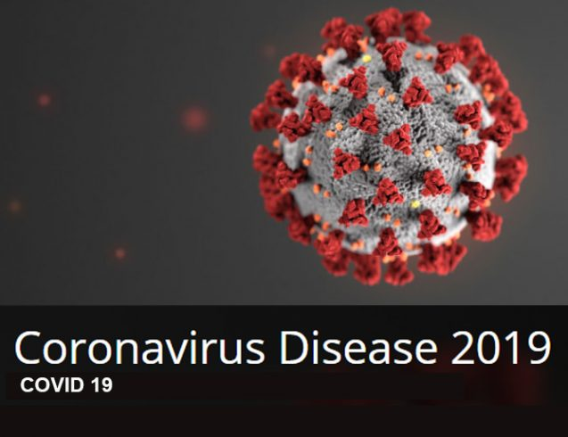 (COVID-19) Coronavirus Federal, State and Local Information Resources